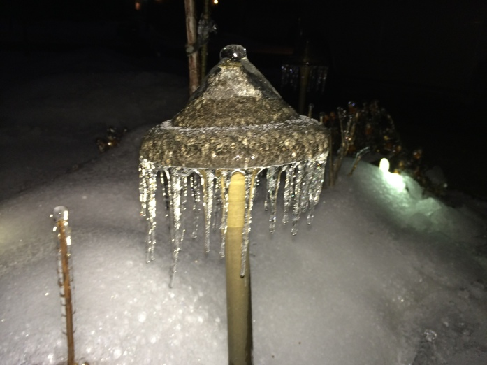 Coastal Source Defies Canada's Elements - Ice Storm 2014